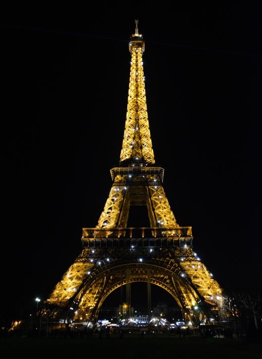 Parigi 2014 045